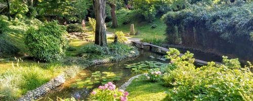 Forest Wellness Belgrade