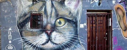 Belgrade Urban, Art and Fun City Tour