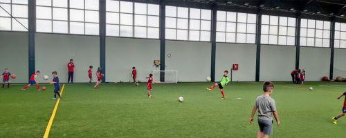 Serbia Sports Training Camps - Baci Pet Belgrade